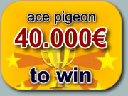 ace pigeon 25.000€ to win